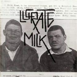 Lucrate Milk – Lustiges Tierquartett