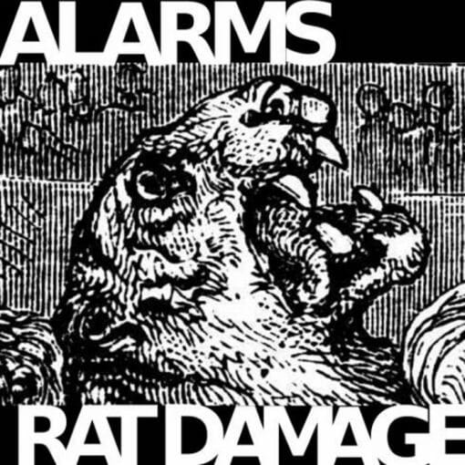 Alarms / Rat Damage